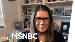 Mary Trump: My Uncle Donald Is 'Fundamentally A Racist' | The Beat With Ari Melber | MSNBC 5