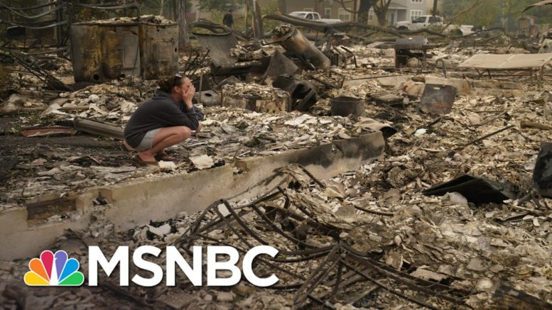 Sen. Merkley On West Coast Wildfires: It 'Puts On Exclamation Point' On Climate Catastrophe | MSNBC 1