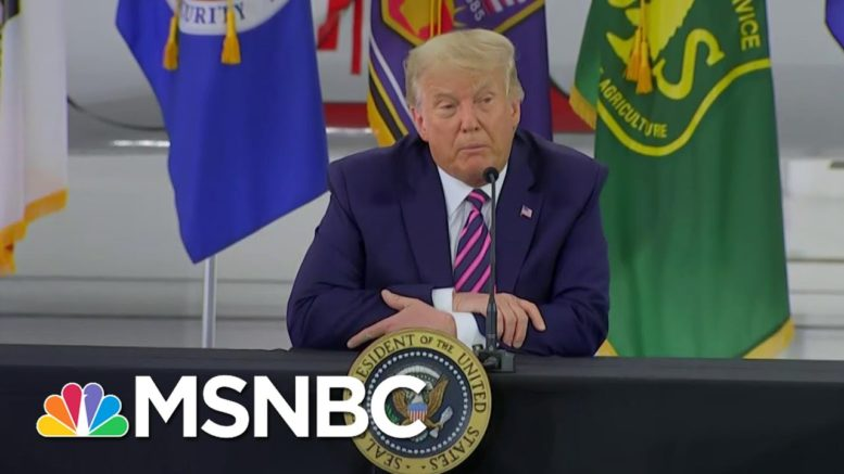 As The West Coast Burns From Massive Wildfires, Trump Thinks He Knows More Than Science | MSNBC 1