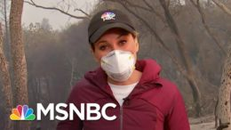 Family Who Lost Their Home In California Wildfire For The Second Time | Craig Melvin | MSNBC 9