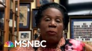 Lee Stops Deportation Of Woman Claiming Fallopian Tube Removed Without Consent | All In | MSNBC 4