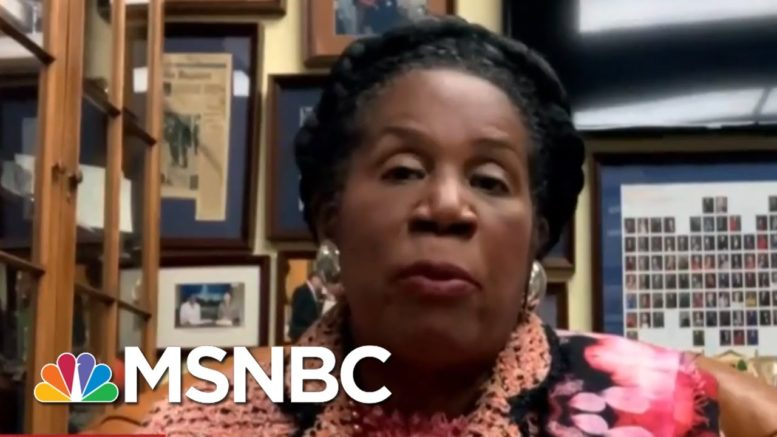 Lee Stops Deportation Of Woman Claiming Fallopian Tube Removed Without Consent | All In | MSNBC 1