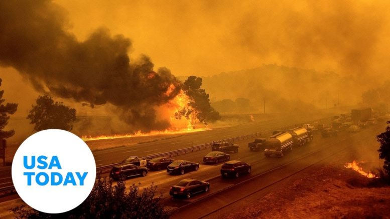 Woman frantically searches for animals as LNU Lightning Complex Fire engulfs ranch | USA TODAY 1