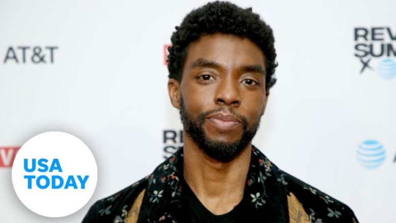 'Black Panther' star Chadwick Boseman dies of cancer at 43 | USA TODAY 1