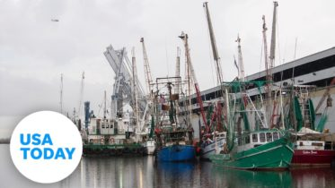 Shrimp boats battered and sunk by Hurricane Laura   USA TODAY 10