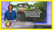 Families Marooned in Westmoreland: TVJ News - August 26 2020 5