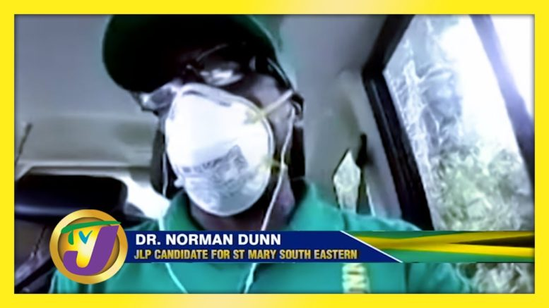 JLP Candidate for St. Mary South Easter: Decision 2020 | Jamaica Vote 1