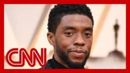 'Black Panther' star Chadwick Boseman dies at 43 8