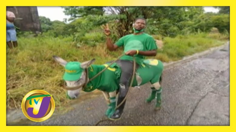 Election Day Outfits: TVJ Smile Jamaica - September 4 2020 1
