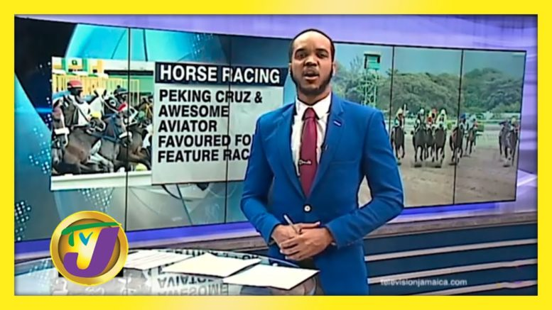 Peking Cruz & Awesome Aviator Favoured for Feature Races - September 4 2020 1