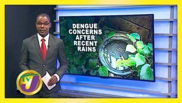 Health Authorities Make Dengue Alert - September 11 2020 6