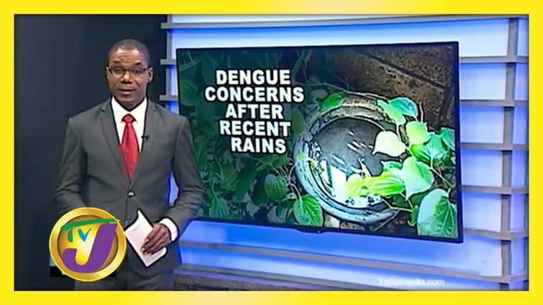 Health Authorities Make Dengue Alert - September 11 2020 1