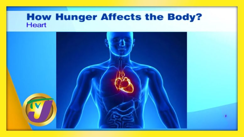 How Hunger Affects the Body - September 15 2020 1