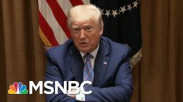 Math On Trump Covid Strategy Has Millions Dying Before It Works | Rachel Maddow | MSNBC 9