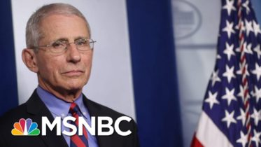 'Good Person,' 'Important To Team': Fauci On fmr. Covid Advisor Who Denounced Trump | All In | MSNBC 6