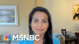 'It's Not Going Away': Doctors Weigh In On Coronavirus | Morning Joe | MSNBC 8