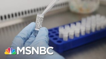 Experts Worry Trump May Rush Covid-19 Vaccine Due To Election | The 11th Hour | MSNBC 6