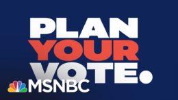 Last Day – Animated PSA | Plan Your Vote | MSNBC 9