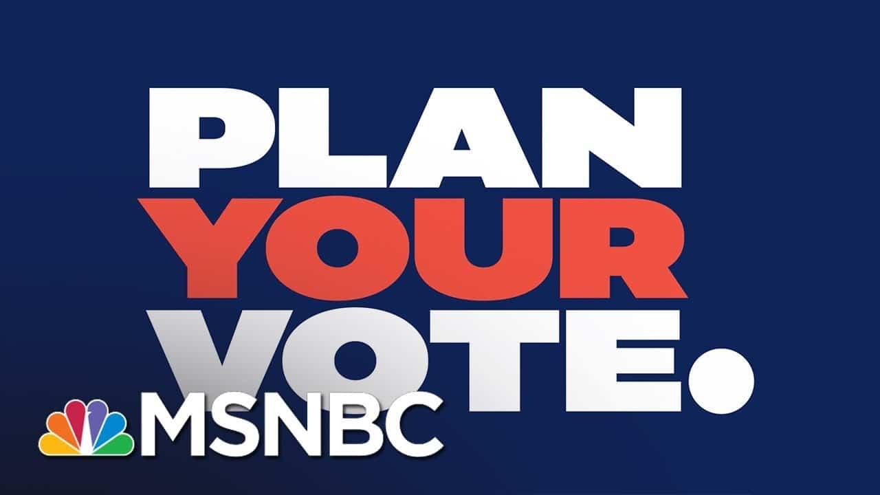 Last Day – Animated PSA | Plan Your Vote | MSNBC 8