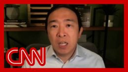 Andrew Yang says he would work in Biden, Harris WH 1