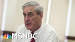 'We Could Have Done More,' Says Mueller Prosecutor In New Book | Morning Joe | MSNBC 8