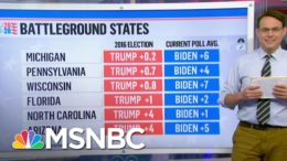 New Polls In Key States Show Trump And Biden In A Dead Heat | Craig Melvin | MSNBC 9