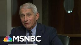 Fauci 'Cautiously Optimistic' There Will Be A Safe And Effective Coronavirus Vaccine | MSNBC 2