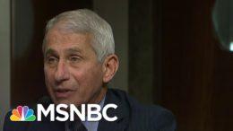 'I Challenge That': Fauci Shuts Down Sen. Paul At Senate Hearing On Herd Immunity In NYC | MSNBC 5