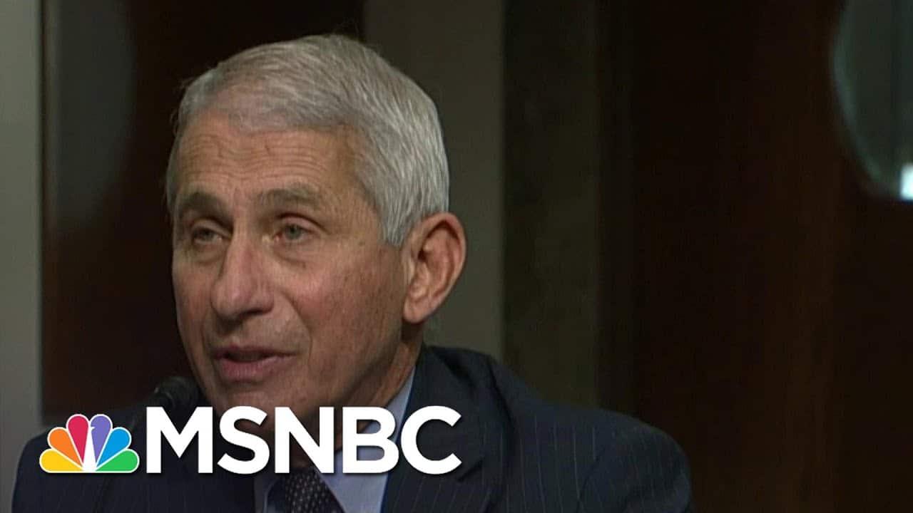 'I Challenge That': Fauci Shuts Down Sen. Paul At Senate Hearing On Herd Immunity In NYC   MSNBC 2