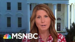 Nicolle Wallace: The Only Person Who Is Committing Voter Fraud Is Donald Trump | Deadline | MSNBC 3