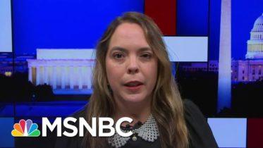 Trump Errors On Coronavirus Not For Lack Of Scientific Advice: Former Task Force Member | MSNBC 6