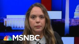 Former COVID-19 Task Force Member Describes Political Pressure On Scientists | Rachel Maddow | MSNBC 1