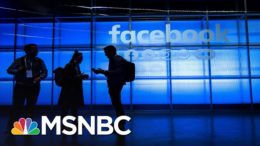 How Facebook Impacts Discourse And Democracy | MSNBC 1