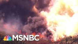 Wildfire in Napa County Causes Mandatory Evacuations At Nearby Hospital | MSNBC 1