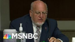 CDC Director On Dr. Scott Atlas: 'Everything He Says Is False' | Ayman Mohyeldin | MSNBC 4