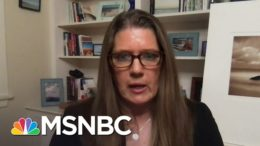 Mary Trump Labels President 'Deeply Unpatriotic' After Report On Income Tax Records | MSNBC 5