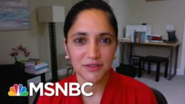 Dr. Kavita Patel: 'Who On Earth Can Believe What The CDC Is Saying?' | MTP Daily | MSNBC 2