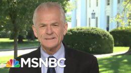 Peter Navarro: 'Second Debater' Wallace Responsible For Trump Missteps | Hallie Jackson | MSNBC 2