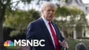 Trump Claims He Doesn't Know Who The Proud Boys Are, Calls On Them To 'Stand Down'   MSNBC 5