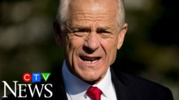 Navarro backpedals on comments about Canadian soldiers, says his remarks were 'taken out of context' 3