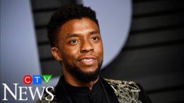 'Black Panther' star Chadwick Boseman dies at 43 after battle with cancer: 'It was really shocking' 5