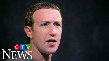 Facebook is 'clear and present danger' to democracies: technology analyst 6
