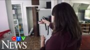 A B.C. family's home was completely trashed by squatters while they were on vacation 3