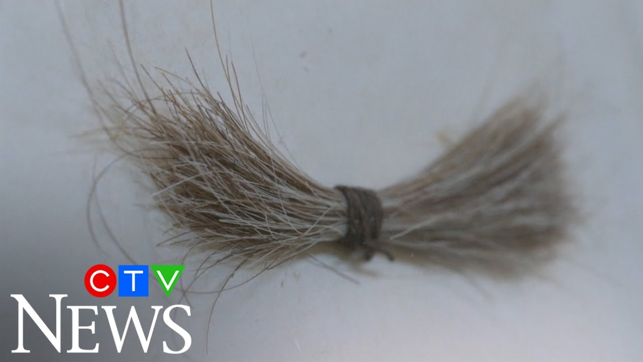 Lock of Abraham Lincoln's hair up for auction 6