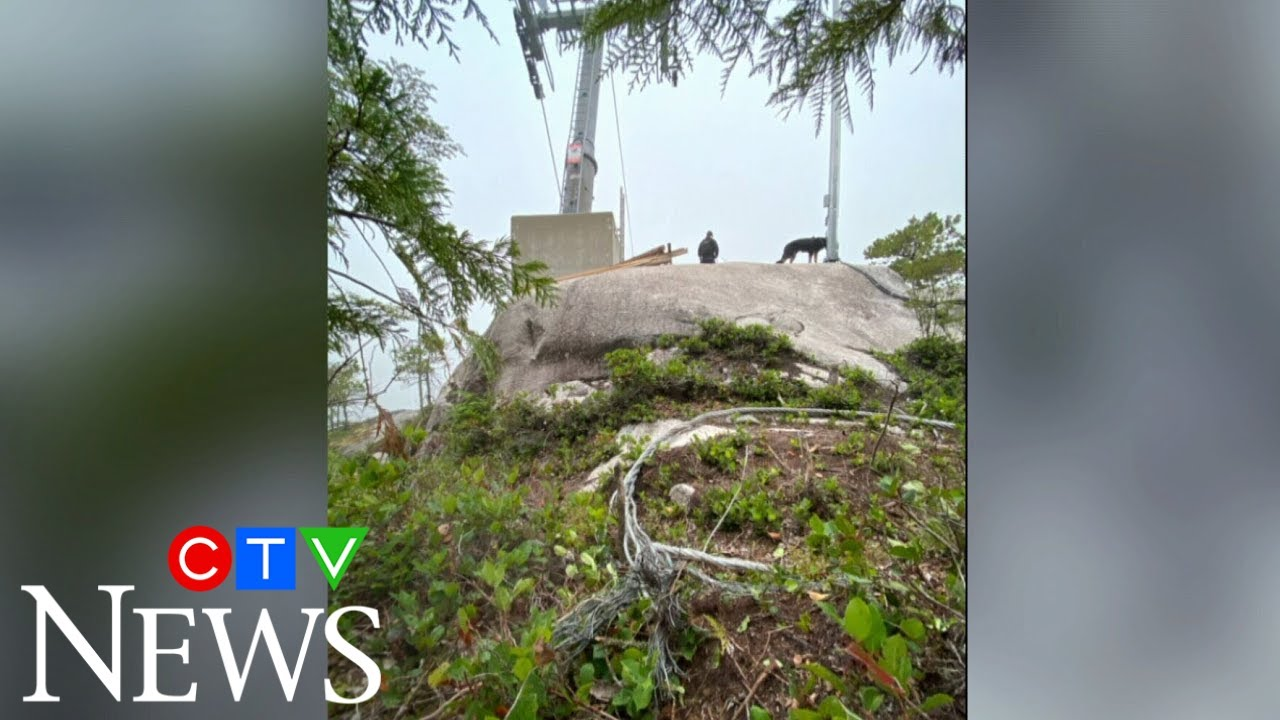 B.C.'s Sea to Sky gondola cable deliberately cut again 9