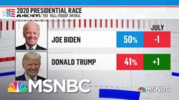 NBC/WSJ Poll: Biden Leads Trump Nationally By Nine Points On Eve Of Conventions | MSNBC 5