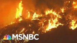 Officials: Gender Reveal Pyrotechnic Sparked California Wildfire | MSNBC 5