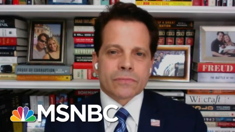 Scaramucci: Trump 'Will Never Write A Personal Check' For Campaign | MTP Daily | MSNBC 1