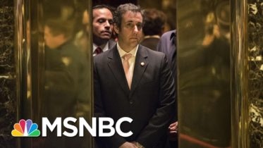 Cohen: Trump Didn't Want To Win; 2016 Campaign Was Just A Branding Opportunity | MSNBC 6