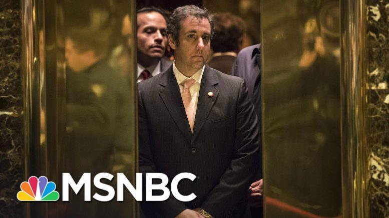 Cohen: Trump Didn't Want To Win; 2016 Campaign Was Just A Branding Opportunity | MSNBC 1